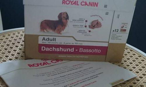 Royal Canin ha creato il cibo per cani apposta per i bassotti