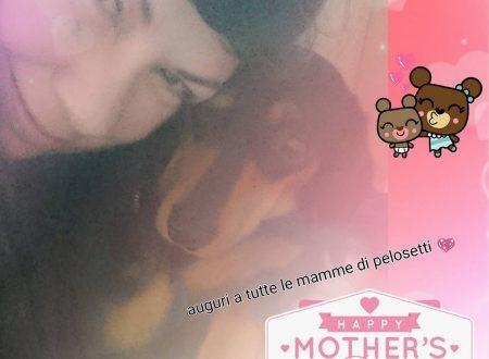 8 Maggio festa della mamma…noi mamme speciali *.:。✿*゚