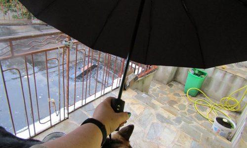 ombrello con apertura/chiusura automatica