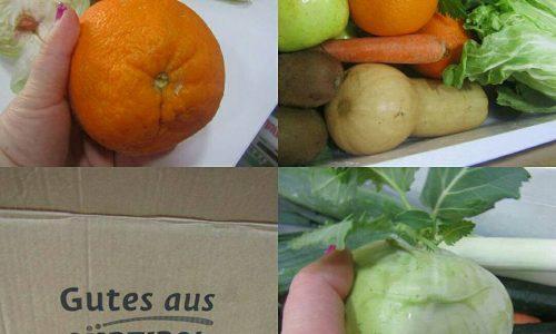 Bio express frutta e verdura bio a domicilio