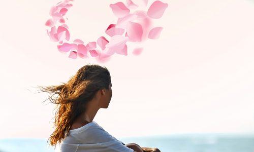 Il profumo dei fiori di ciliegio