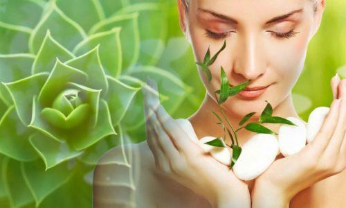 Jeidant cosmetica prodotti per viso e corpo naturali