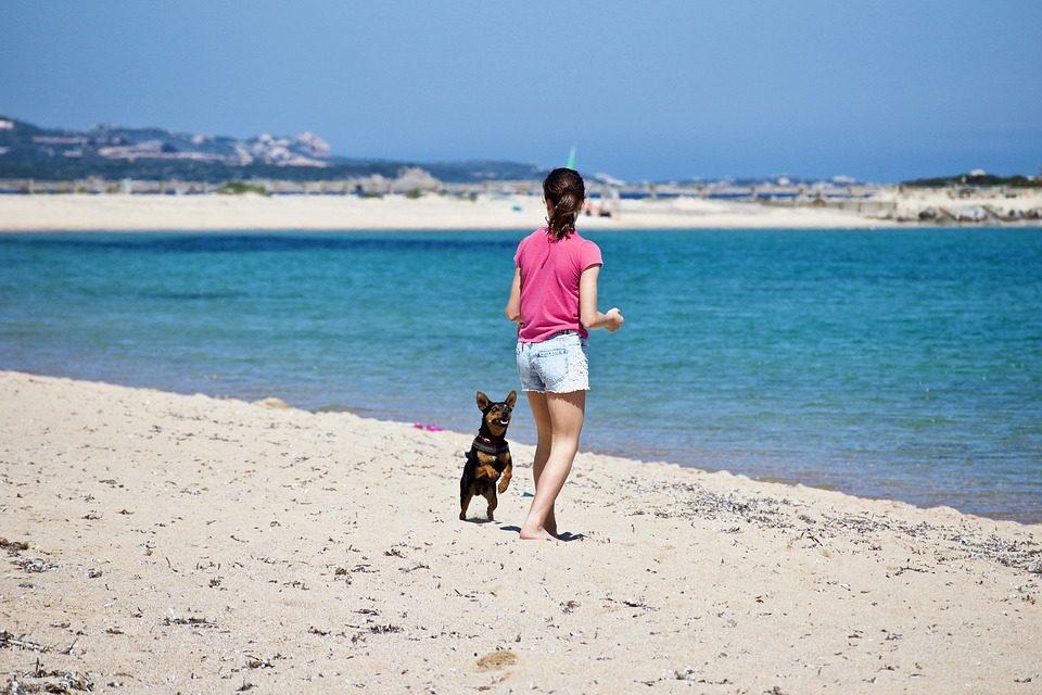 estate-cani-come-tenerli-al-fresco